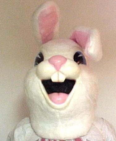 Dlx_bunny_head
